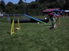 19-07-14-hse-agilityseminar-bernd-und-mandy-15-linda.png