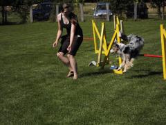 19-07-14-hse-agilityseminar-lisa-und-filou-13-linda.png