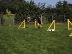 19-07-14-hse-agilityseminar-steffi-und-amy-05-linda.png
