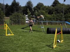 19-07-14-hse-agilityseminar-steffi-und-amy-steg-03-linda.png