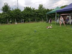 Seminar_Frisbee_2017_07_08_28.png